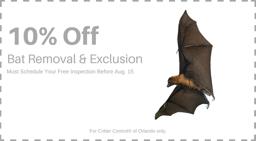 Get 10% Off Removal & Exclusion