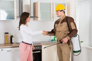 Are Landlords Responsible for Pest Control?
