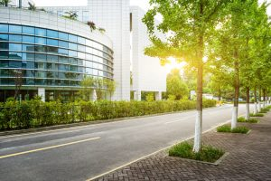Summer Pest Problems for Commercial Buildings