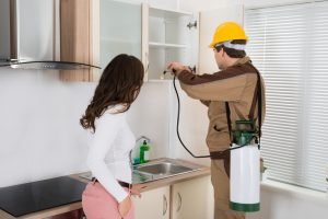 How Often Should You Check for Pests in Your Apartment Complex?